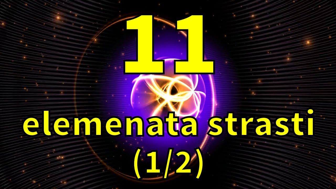 Srđan Roje: 11 elemenata strasti (1/2)